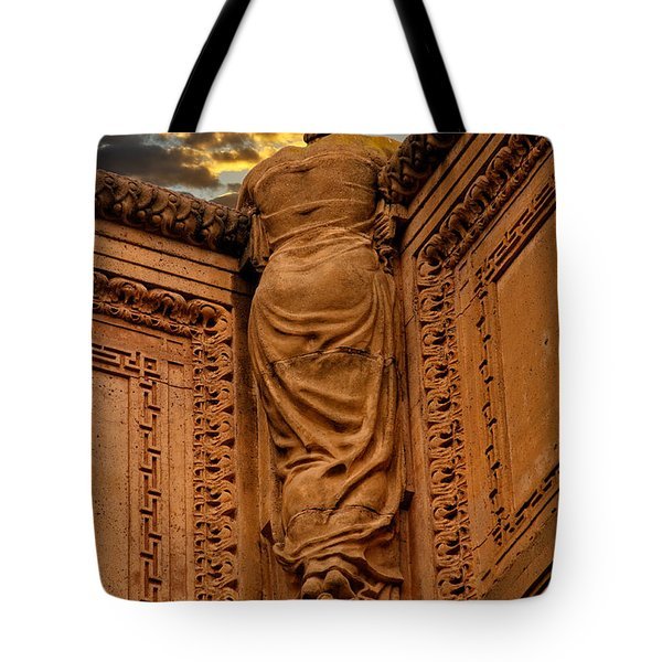Tote Bag featuring the photograph Enjoying The Sunset by Harry Spitz