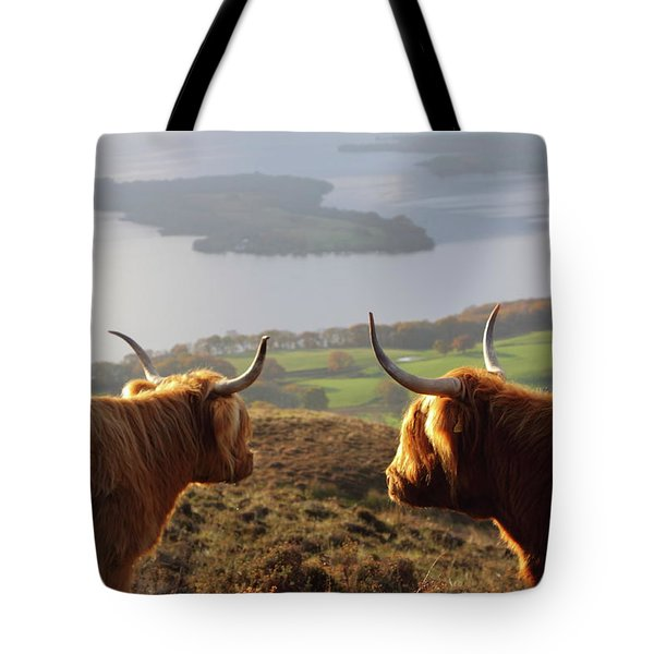 Enjoying The View - Highland Cattle Tote Bag