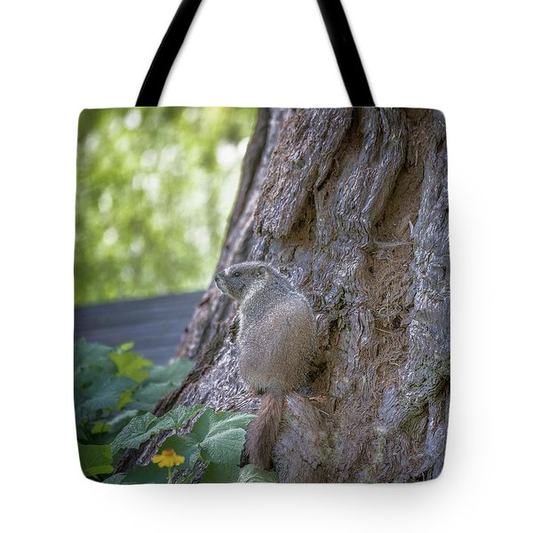 Enjoying The View Tote Bag