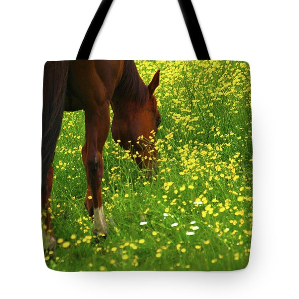 Tote Bag featuring the photograph Enjoying The Wildflowers by Karol Livote