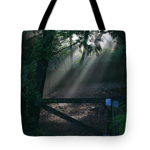 Tote Bag featuring the photograph Enlighten by Lori Mellen-Pagliaro