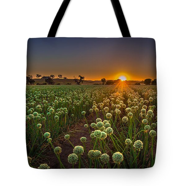 Enlightenment  Tote Bag by Tim Bryan