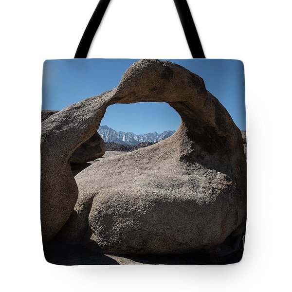 Tote Bag featuring the photograph Enlightning by Sandra Bronstein