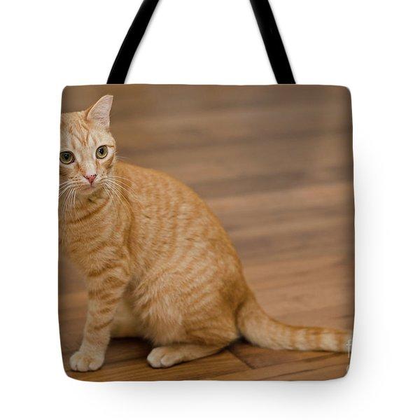 Enrique 1 Tote Bag