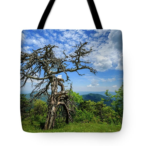 Ent At The Top Of The Hill - Color Tote Bag by Joni Eskridge