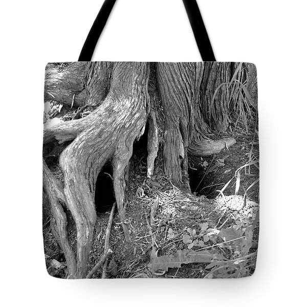 Ent Foot Tote Bag