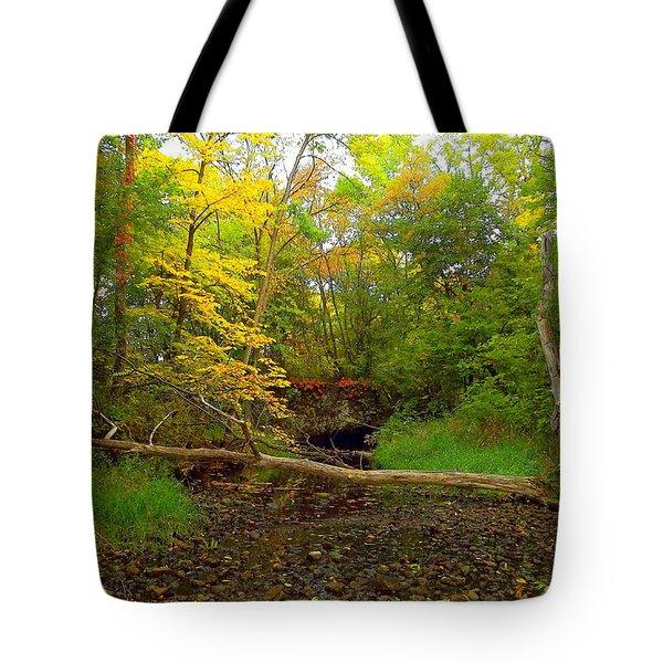 Enter Autumn Tote Bag