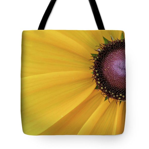 Tote Bag featuring the photograph Enter Stage Left by David Coblitz