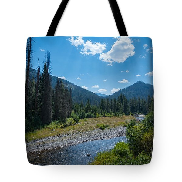 Entering Yellowstone National Park Tote Bag