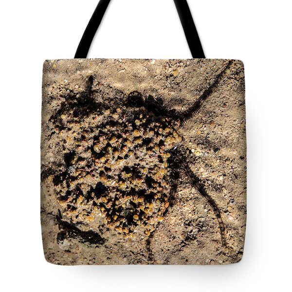 Tote Bag featuring the photograph Enticing In  by Jez C Self