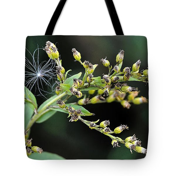Entrapped Tote Bag