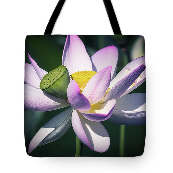 Entwined... Tote Bag