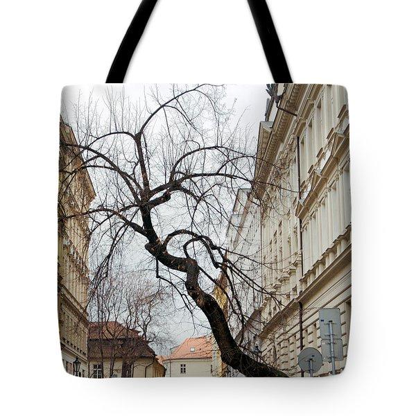 Enveloped Tote Bag