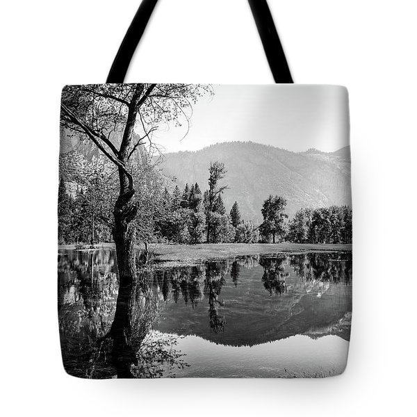 Ephemeral Tote Bag