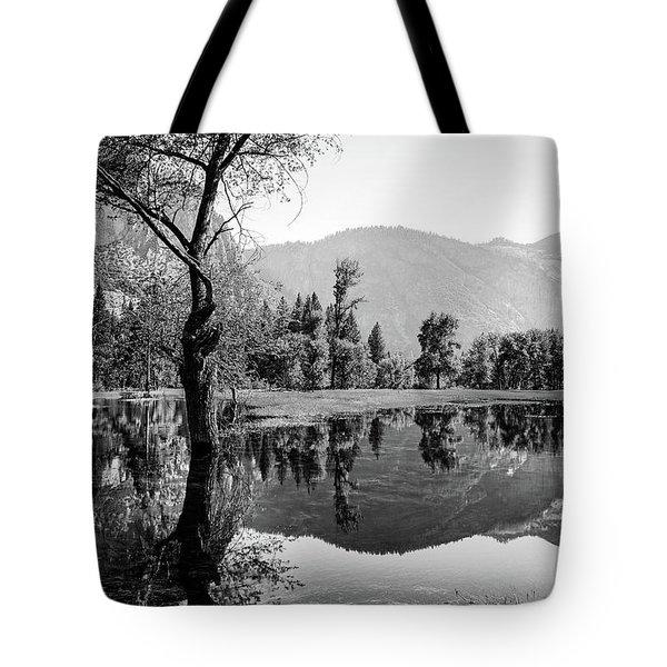 Ephemeral Tote Bag