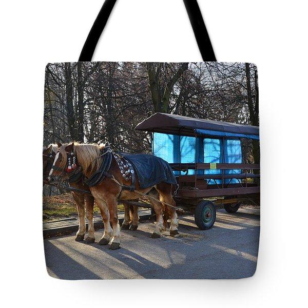 Equestrian Team Tote Bag