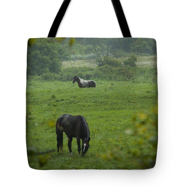 Equine Buddies Tote Bag