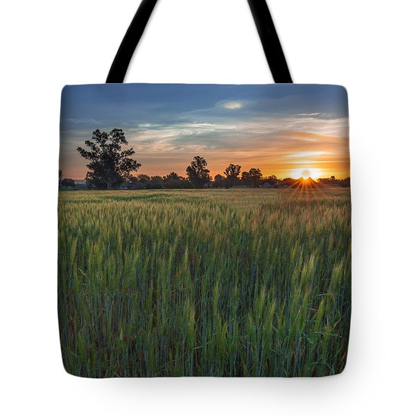 Equinox-first Sunrise Of Spring Tote Bag by Tim Bryan