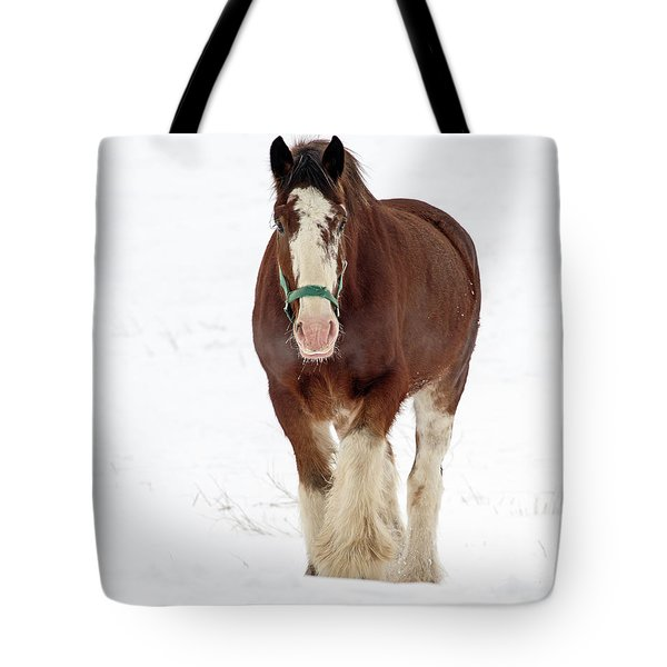 Tote Bag featuring the photograph Equus Caballus.. by Nina Stavlund