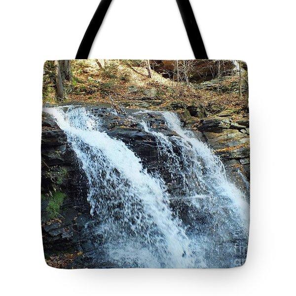 Erie Falls - Ricketts Glen Tote Bag