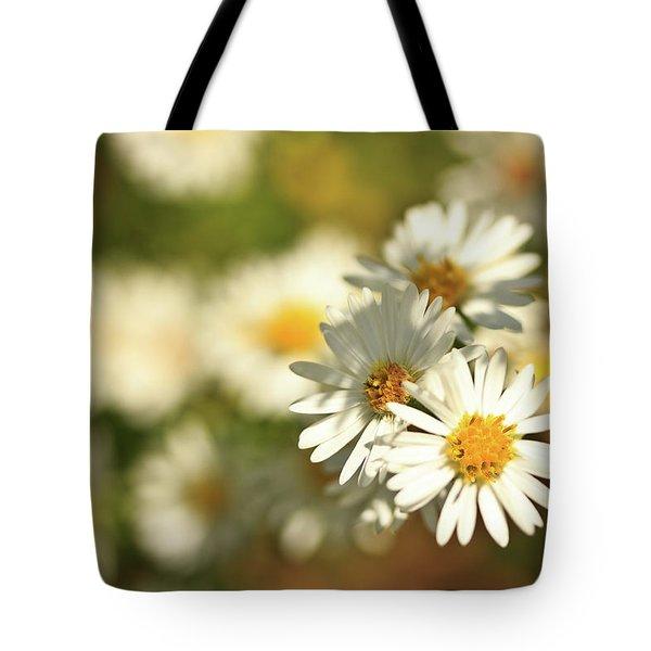 Erigeron Annuus Daisy Like Wildflower Tote Bag