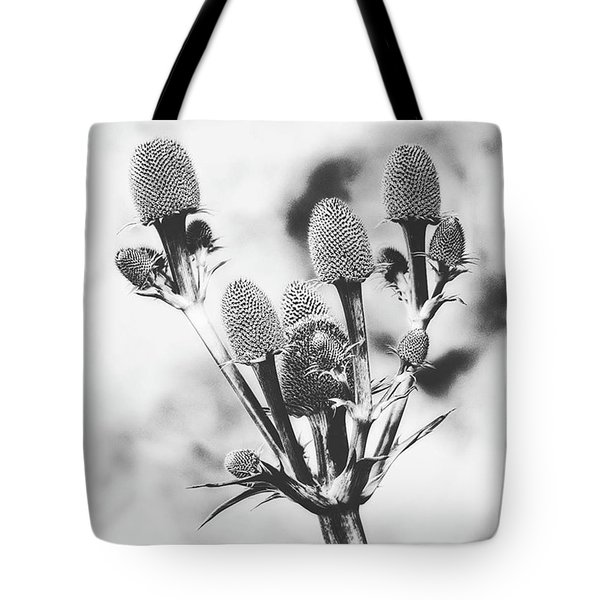 Eryngium #flower #flowers Tote Bag by John Edwards