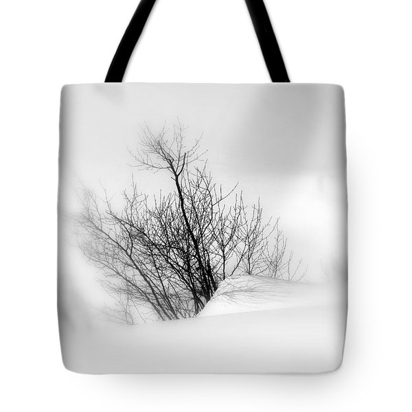 Essence Of Winter Tote Bag by Elfriede Fulda