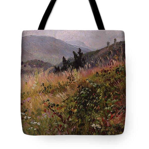 Essex County In The Adirondacks Tote Bag