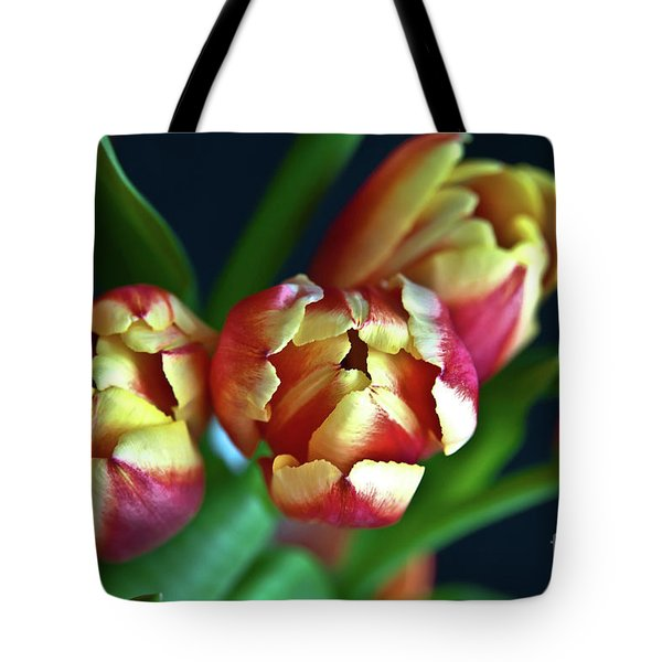 Tote Bag featuring the photograph Eternal Sound Of Spring by Silva Wischeropp