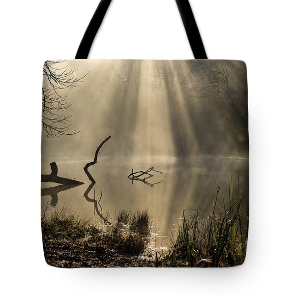 Tote Bag featuring the photograph Ethereal - D009972 by Daniel Dempster