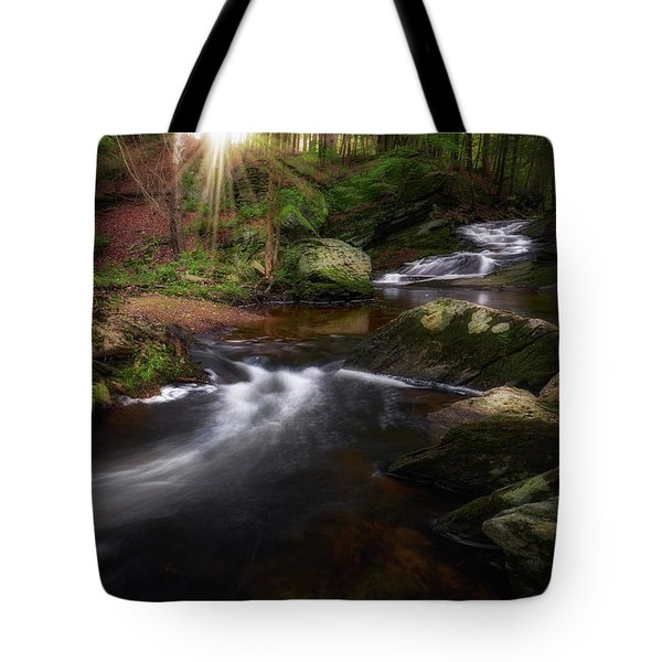 Tote Bag featuring the photograph Ethereal Morning 2017 by Bill Wakeley