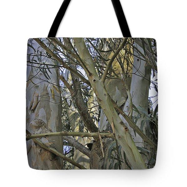 Eucalyptus Study Tote Bag