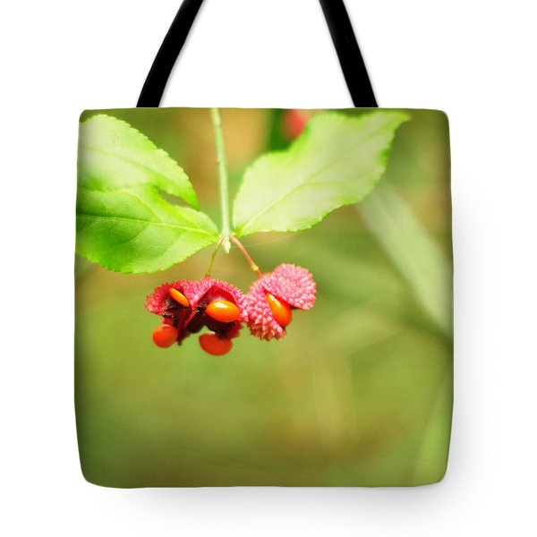 Euonymus Americanus  American Strawberry Bush Tote Bag