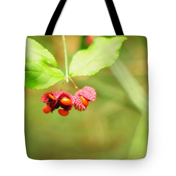 Euonymus Americanus  American Strawberry Bush Tote Bag