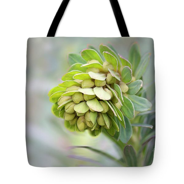 Tote Bag featuring the photograph Euphorbia by Linda Lees