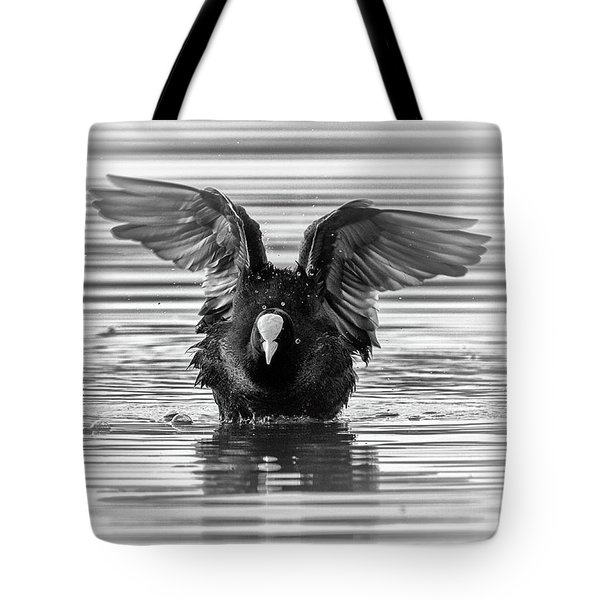 Eurasian Or Common Coot, Fulicula Atra, Duck Tote Bag by Elenarts - Elena Duvernay photo