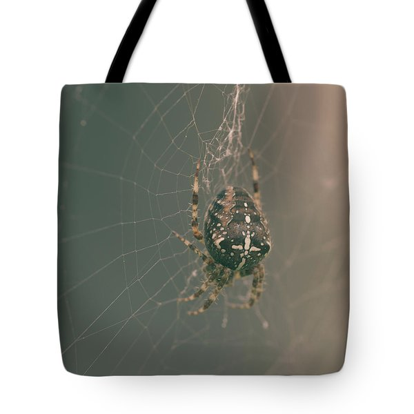 European Garden Spider B Tote Bag
