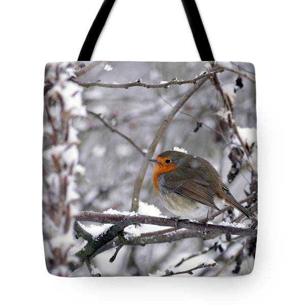 European Robin In The Snow At Christmas Tote Bag