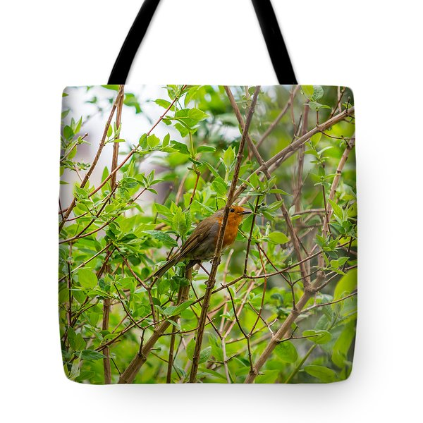 European Robin Tote Bag