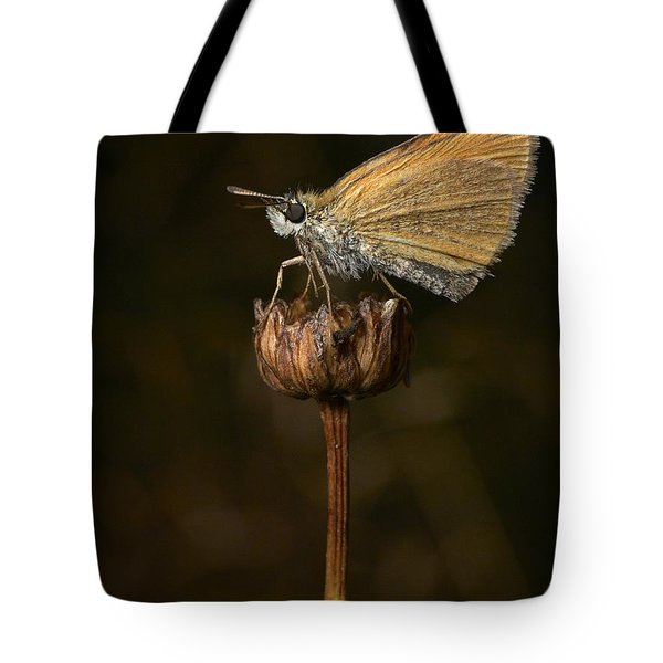 Tote Bag featuring the photograph European Skipper by Jouko Lehto