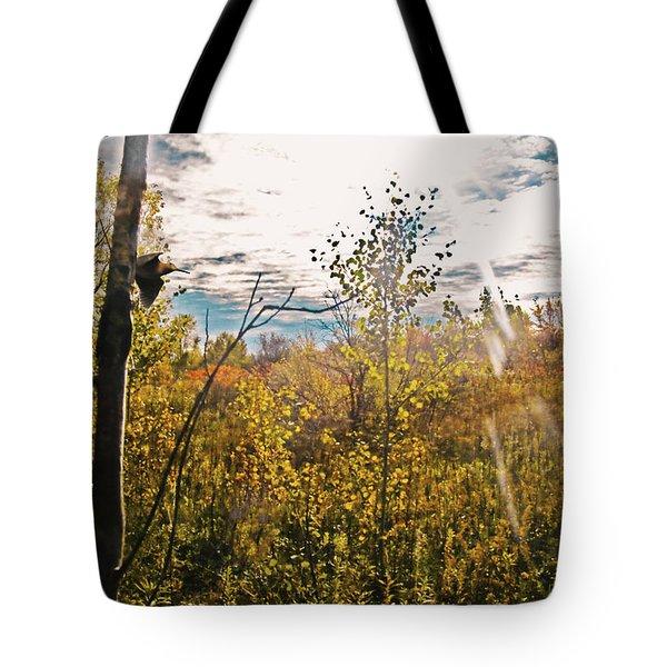 Evanescent Dreams Of Autumn Tote Bag