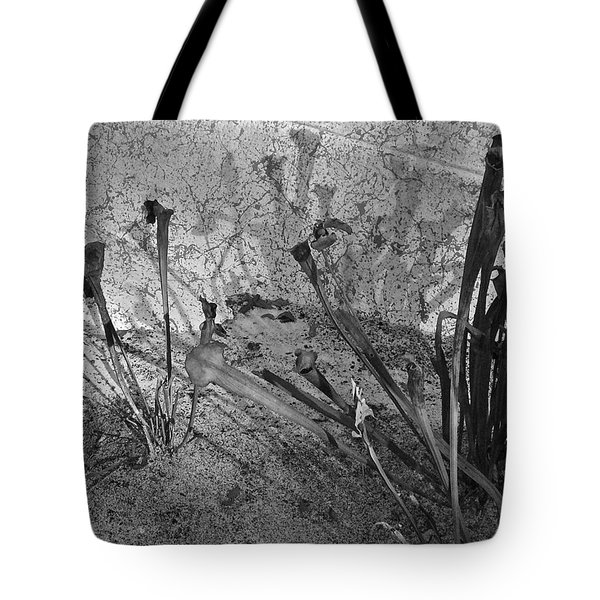 Tote Bag featuring the photograph Even The Shadows Dance by Mary Sullivan