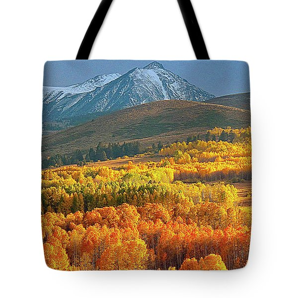 Evening Aspen Tote Bag