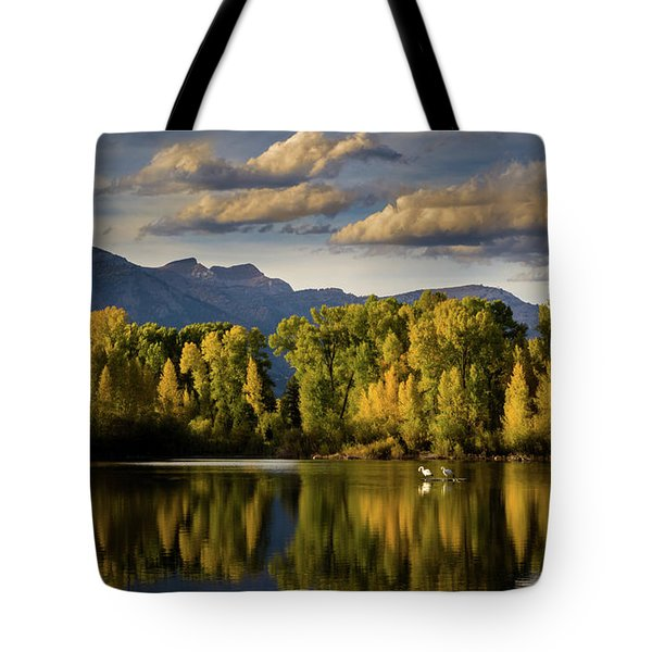 Evening At Indian Springs Tote Bag