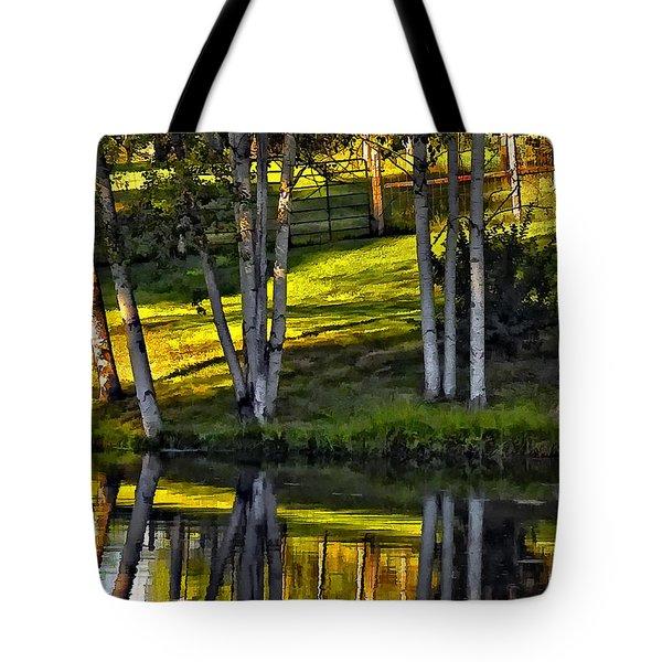 Evening Birches Tote Bag by Steve Harrington