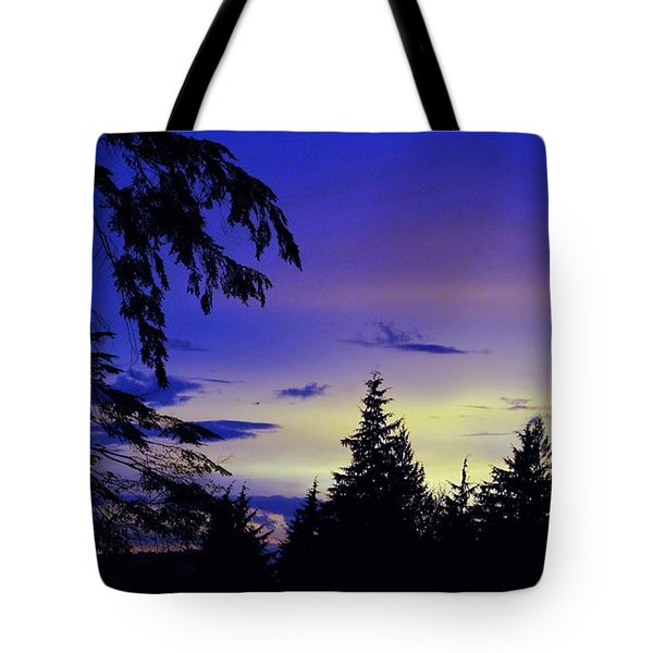 Tote Bag featuring the photograph Evening Blue by Victor K
