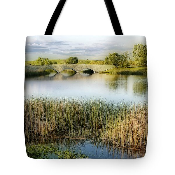 Evening Calm Tote Bag by Teresa Zieba