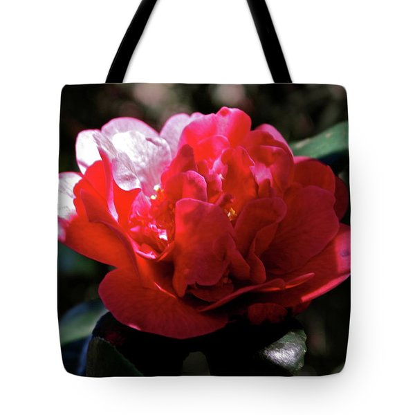 Tote Bag featuring the photograph Evening Camellia by Michele Myers
