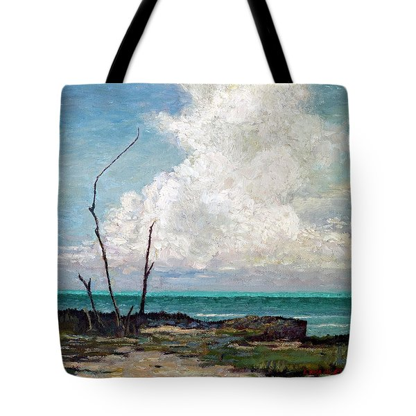 Tote Bag featuring the painting Evening Cloud by Ritchie Eyma
