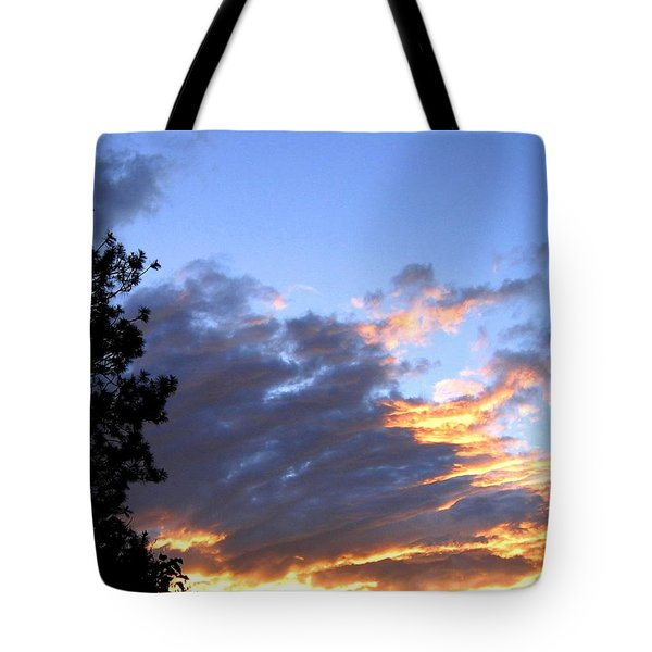 Evening Color Tote Bag by Will Borden